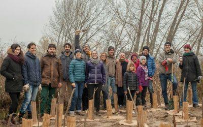 A Mantova un bosco post-industriale, da vivere e sostenere